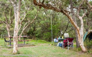 Campsite set up under the trees and near the river