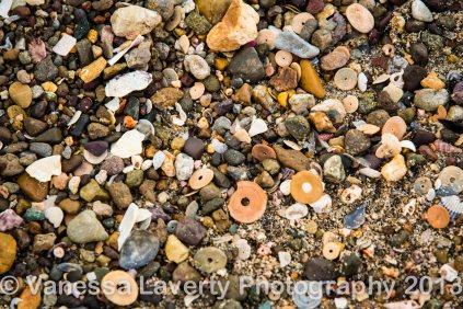Airlie Beach-10