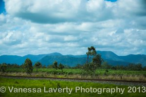 Just outside Mackay, cane fields with the mountains as a beautiful backdrop