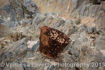 Rusty bucket on the river floor