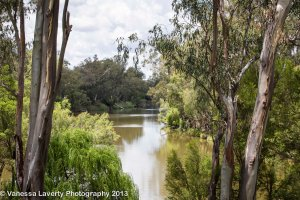 On the banks of the McIntyre River, Goondiwindi