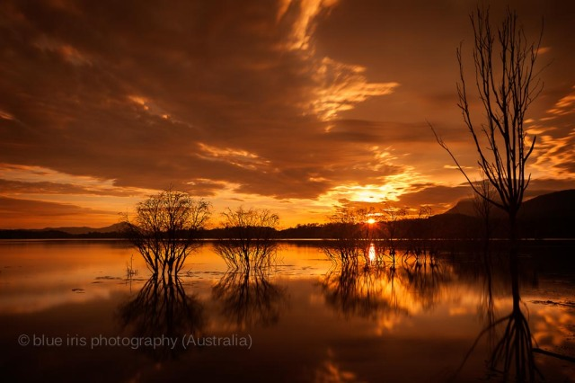 Lake Camp Fire | Gold Coast Photographer