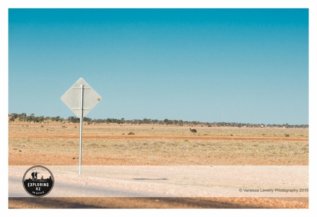 Birdsville to Windorah 20