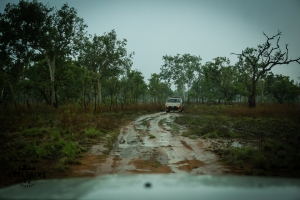 copyright_vanessa_laverty_orchid_creek_trip_toyota_landcruiser_club_darwin_2016-60